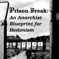 398 Prison Break: An Anarchist Blueprint for Hedonism, by Flower Bomb